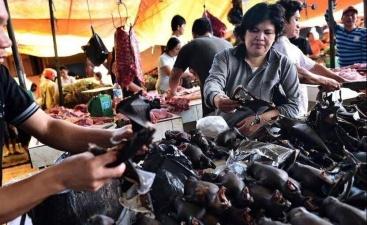 В Ухане запрещены охота, разведение и продажа мяса диких животных
