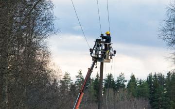 В Эстонии из-за шторма без электричества остались свыше 2500 домохозяйств