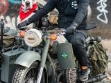 Огромный дог на мотоцикле стал звездой Лондона