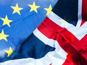 В руководстве Германии предложили давать юным британцам европейские паспорта