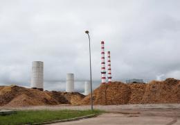 Нарвские электростанции хотят увеличить сжигание древесины до миллиона тонн