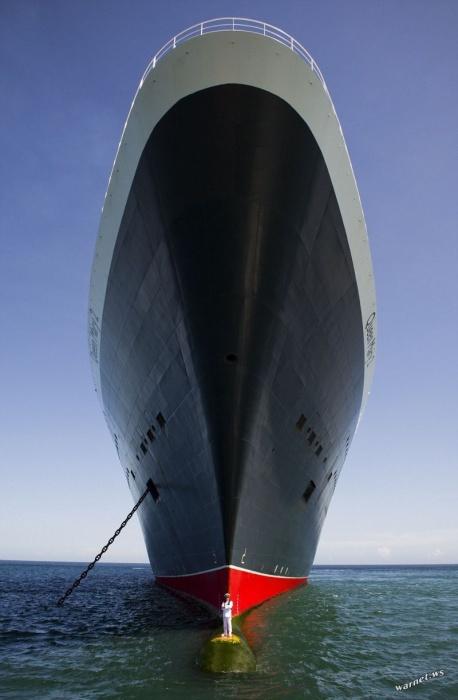 Найди капитана круизного лайнера