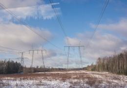 Цена на электричество для частных потребителей в Эстонии в 2018 году была ниже средней по ЕС