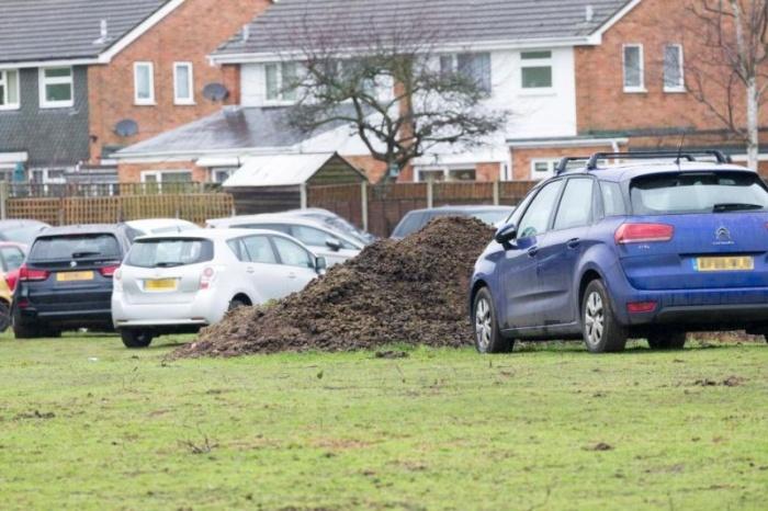 Автомобили британцев, улетевших в отпуск, хранили в загоне с лошадьми
