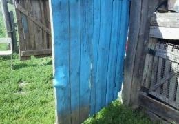 Что следует проверить перед покраской гаражных ворот из пульверизатора