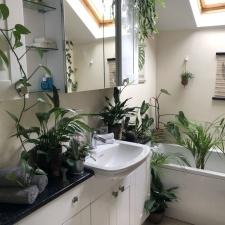 Парень тратит по несколько часов в день, чтобы полить 1400 растений в квартире