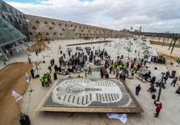 В Египте установили очень странный рекорд Гиннеса