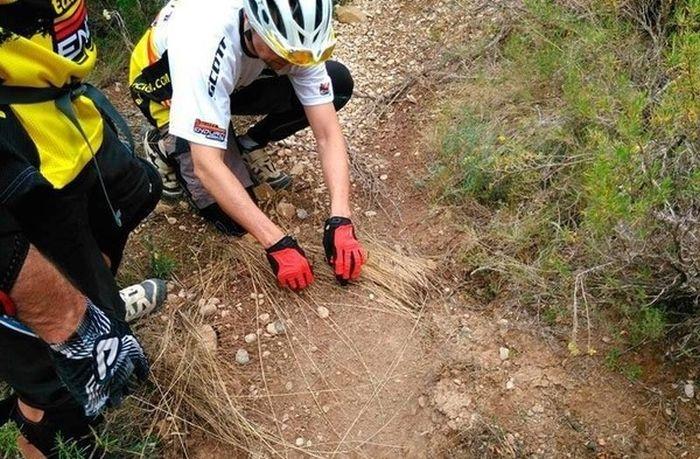 Коварная и жестокая ловушка для велосипедистов