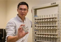 В Японии разработали долговечные аккумуляторы