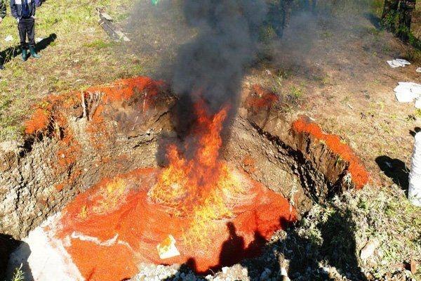 Уничтожение четырех тонн красной икры на Камчатке