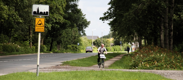 Строить велодорожку в Усть-Нарву будут вопреки мнению волости