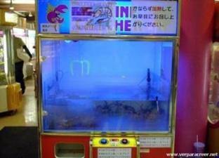 Аквариум...тьфу ты.....игровой автомат ;-)
