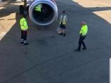 Сотрудники аэропорта случайно обнаружил сову, спящую в двигателе самолёта