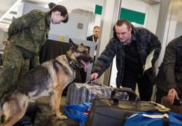 Совет Федерации РФ призвал усилить охрану АЭС и аэропортов
