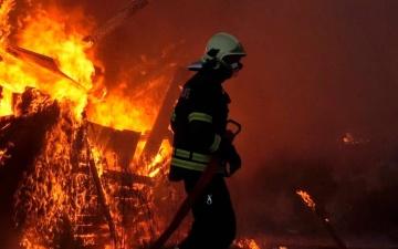В Силламяэ установили личности причастных к поджогу детского сада, 500 евро никто не получил