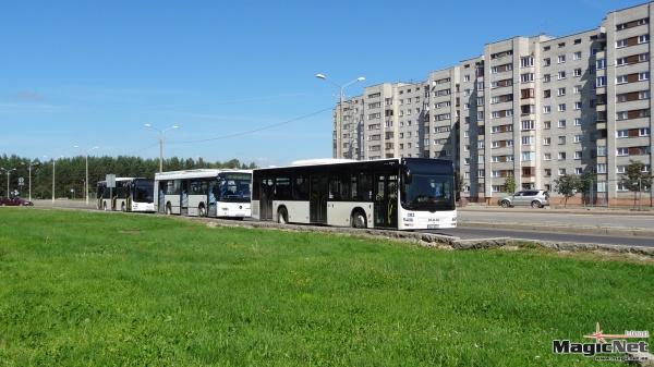В результате смены фирмы-перевозчика в Нарве могут потерять работу 70 водителей автобусов