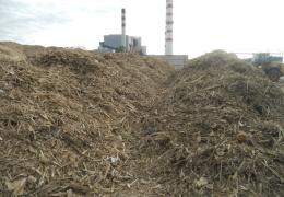 Eesti Energia на Балтийской электростанции построит в 2019 году дробилку древесных отходов