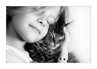 Что означает кошачье мяуканье?