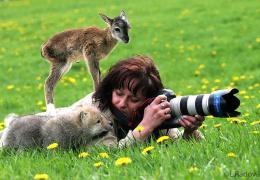 Прелести работы фотографом дикой природы