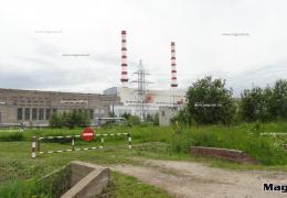 Рядом с Нарвскими электростанциями хотят разбить агропарк