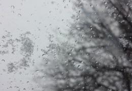 Холодно на улице, мокрый снег идёт, появились лужицы прямо у ворот: прогноз погоды в Эстонии до среды