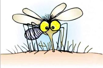 Комары появятся в Эстонии через две недели